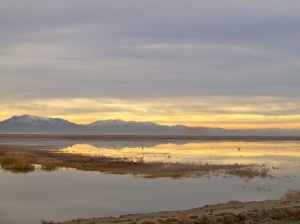 Antelope Island State Park