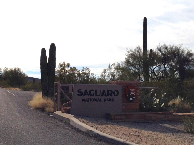 Saguaro National Park Entrance