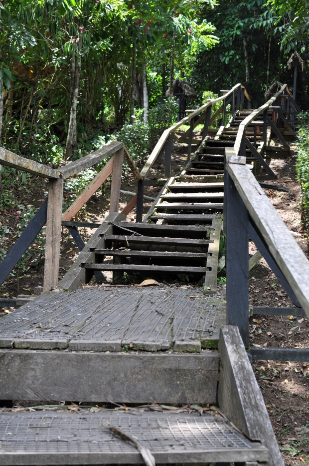 Stairs to cabins at Sacha Lodge