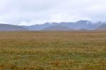Antisana Volcano Ecological Reserve