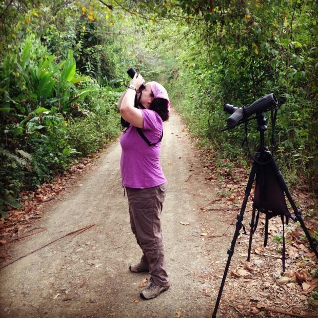 Birding at Machalilla National Park