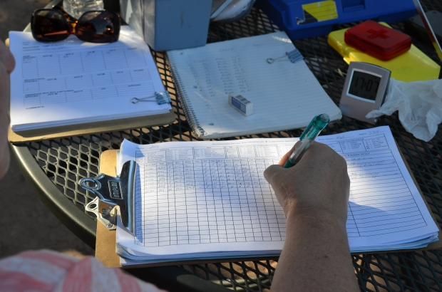 Hummingbird banding recording data